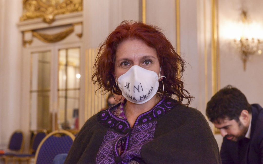 Emergencia por Violencia de Género: Necesitamos políticas públicas para garantizar el Ni Una Menos